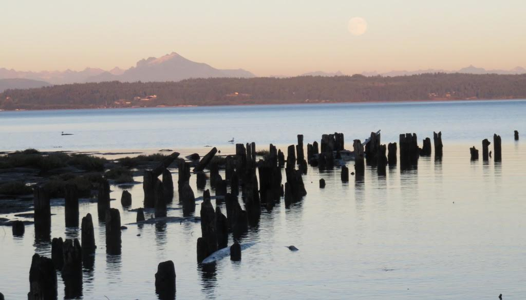 Beaches of Camano: Livingston Bay and Sundin Beach