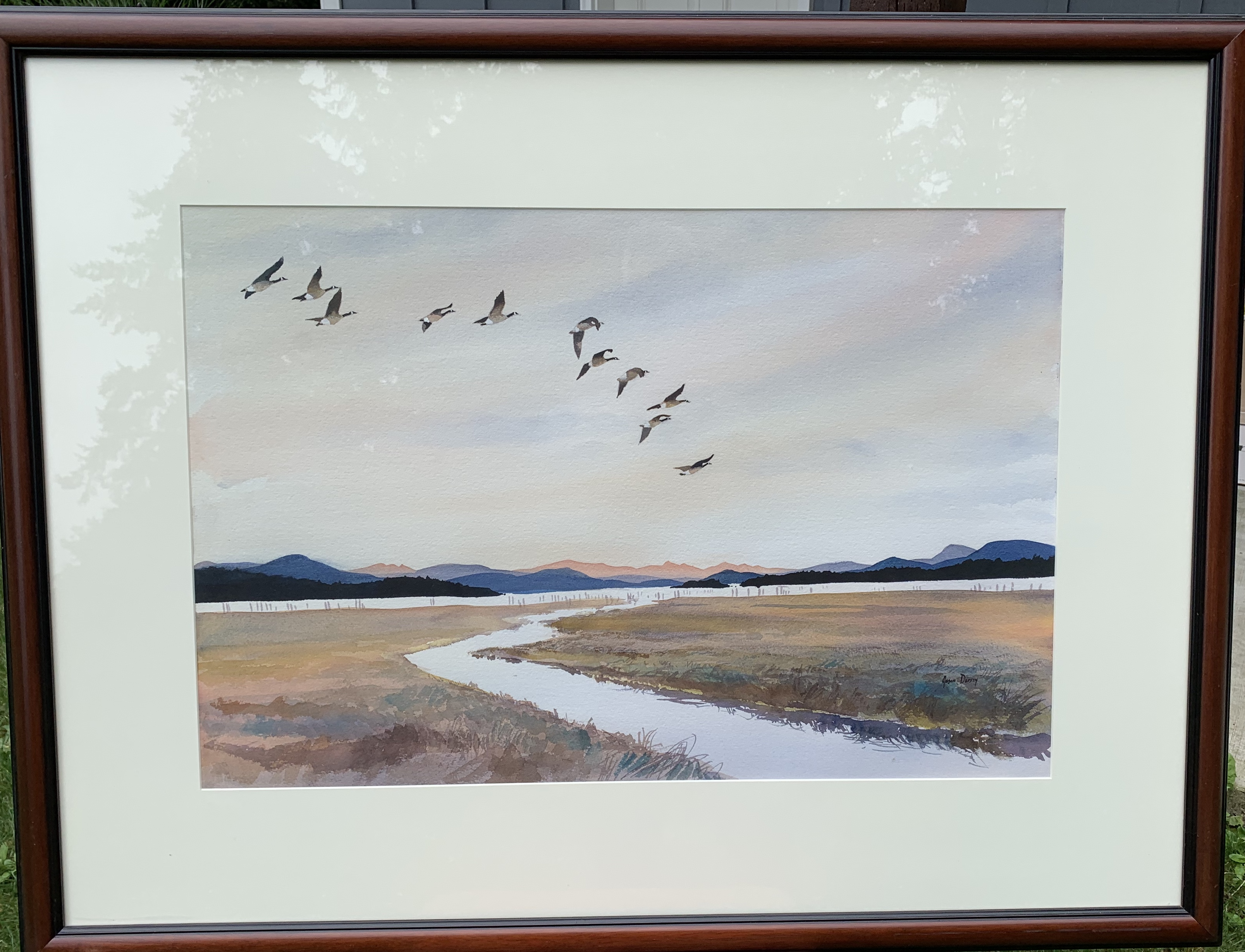 Geese over Skagit Bay