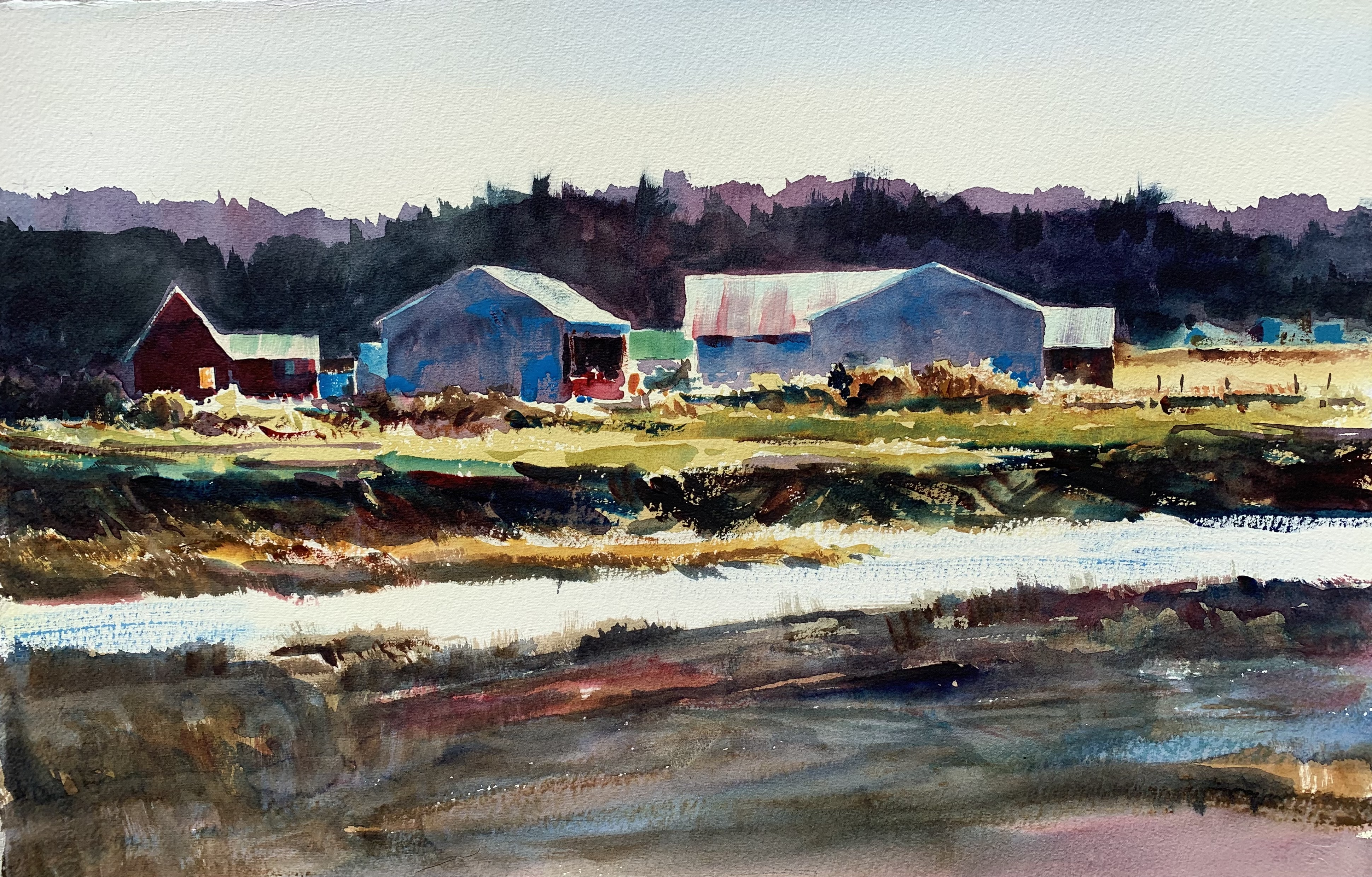 Painting Place: Impressions of Camano by Jason Dorsey
